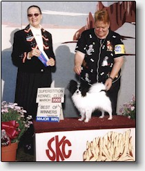 Rocke winning at the Superstition Kennel Club